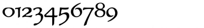 P22 Elven Font OTHER CHARS