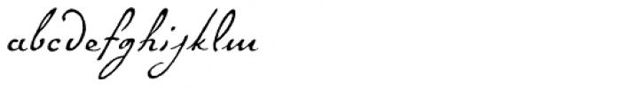 P22 Gauguin Alternate Font LOWERCASE
