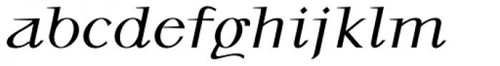 P22 Kirkwall Pro Bold Italic Font LOWERCASE