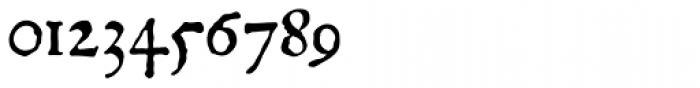 P22 Mayflower Pro Italic Font OTHER CHARS