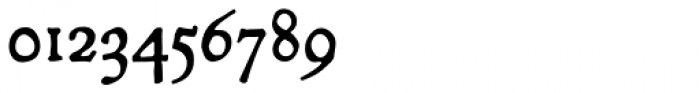 P22 Mayflower Pro Font OTHER CHARS