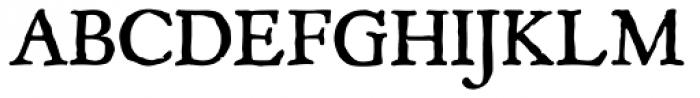 P22 Mayflower Font UPPERCASE