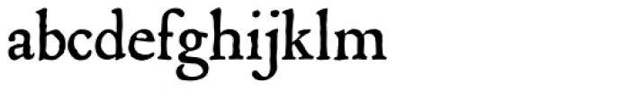 P22 Mayflower Font LOWERCASE