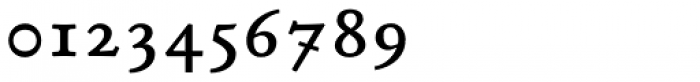 P22 Stickley Pro Caption Font OTHER CHARS