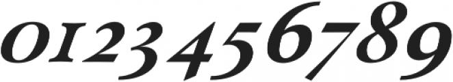 Paciencia Black Italic otf (900) Font OTHER CHARS