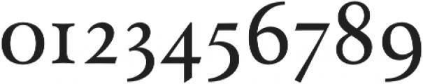 Paciencia Medium otf (500) Font OTHER CHARS