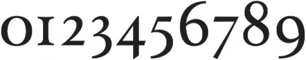 Paciencia Medium ttf (500) Font OTHER CHARS