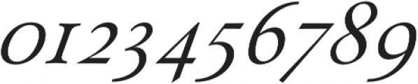 Paciencia Regular Italic otf (400) Font OTHER CHARS