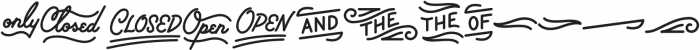 Palm Canyon Drive Bonus Glyphs Heavy otf (800) Font LOWERCASE