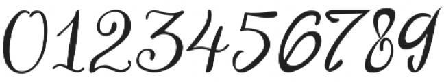 ParkukedengeRk Italic otf (400) Font OTHER CHARS