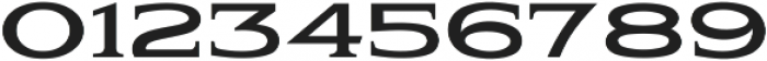 Pauraque_Serif_Clean ttf (400) Font OTHER CHARS