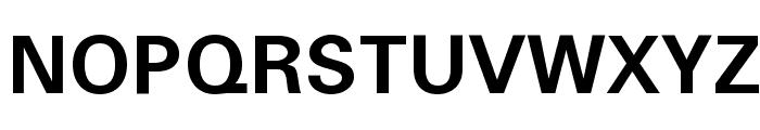 Padauk Book Bold Font UPPERCASE