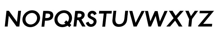 Paddington Bold Italic Font UPPERCASE