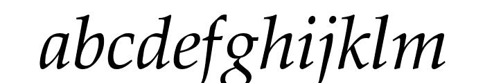 Palatia Italic Font LOWERCASE