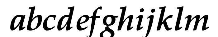 Pali Bold Italic Font LOWERCASE