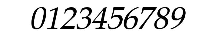 Pali Italic Font OTHER CHARS