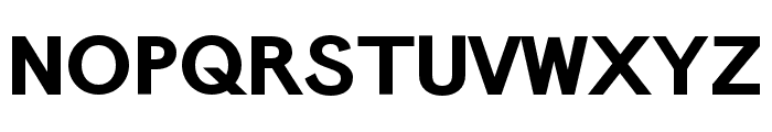 Panamera Bold Font UPPERCASE