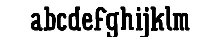 Panforte Serif Bold Font LOWERCASE