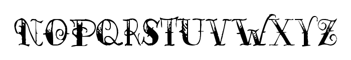 Pauls Esther Font Font LOWERCASE