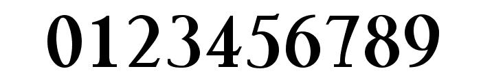 Pauls Kanji Font Bold Font OTHER CHARS