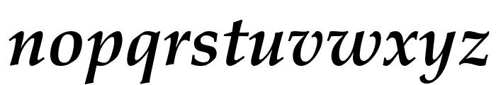Palatino Linotype Bold Italic Font LOWERCASE