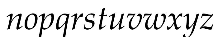 Palatino Linotype Italic Font LOWERCASE