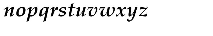 Palatino Bold Italic Font LOWERCASE