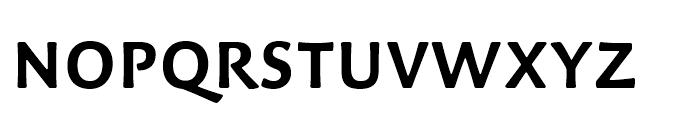 Palatino Sans Arabic Bold Font UPPERCASE