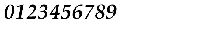 Palatino nova Cyrillic Bold Italic Font OTHER CHARS