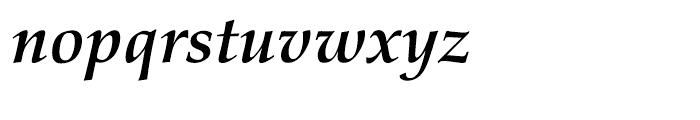 Palatino nova Cyrillic Bold Italic Font LOWERCASE