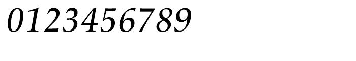 Palatino nova Medium Italic Font OTHER CHARS