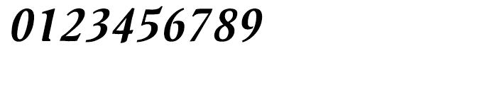 Pallada Bold Italic Font OTHER CHARS