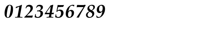 Palladio Bold Italic Font OTHER CHARS