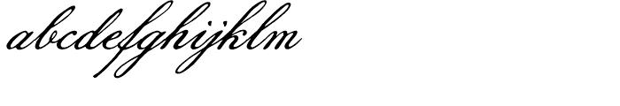 Pansy Bo Regular Font LOWERCASE