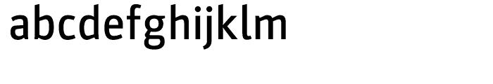 Parka Medium Font LOWERCASE