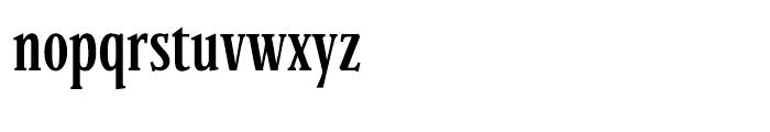Parkinson Condensed Light Font LOWERCASE