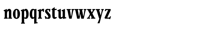 Parkinson Condensed Font LOWERCASE