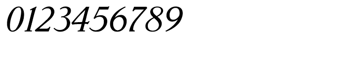 Parkinson Italic Font OTHER CHARS