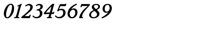 Parkinson Medium Italic Font OTHER CHARS