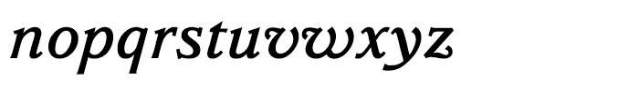 Parkinson Medium Italic Font LOWERCASE