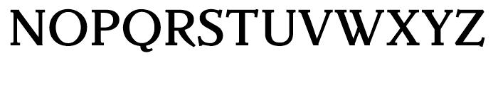 Parkinson Medium Font UPPERCASE