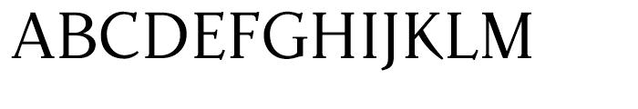 Parkinson Roman Font UPPERCASE
