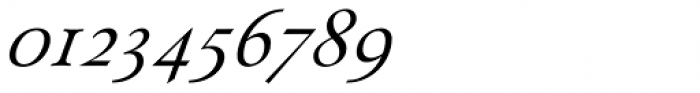 Paciencia Regular Italic Font OTHER CHARS
