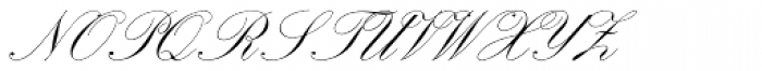 Palace Script Font UPPERCASE