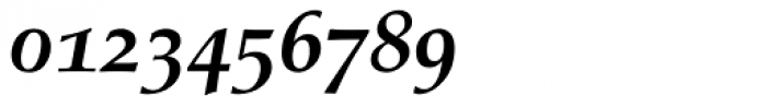 Palatino Bold Italic Old Style Figures Font OTHER CHARS