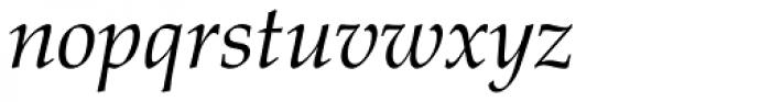 Palatino Italic Font LOWERCASE