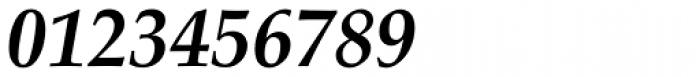Palatino Linotype Bold Italic Font OTHER CHARS