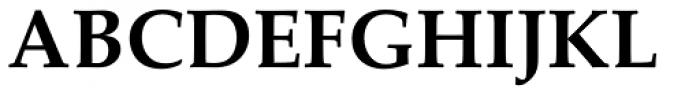 Palatino Linotype Bold Font UPPERCASE