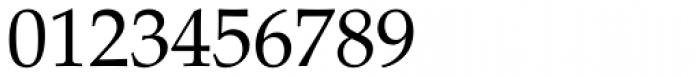 Palatino Roman Font OTHER CHARS