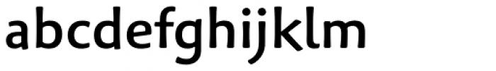 Palatino Sans Informal Medium Font LOWERCASE